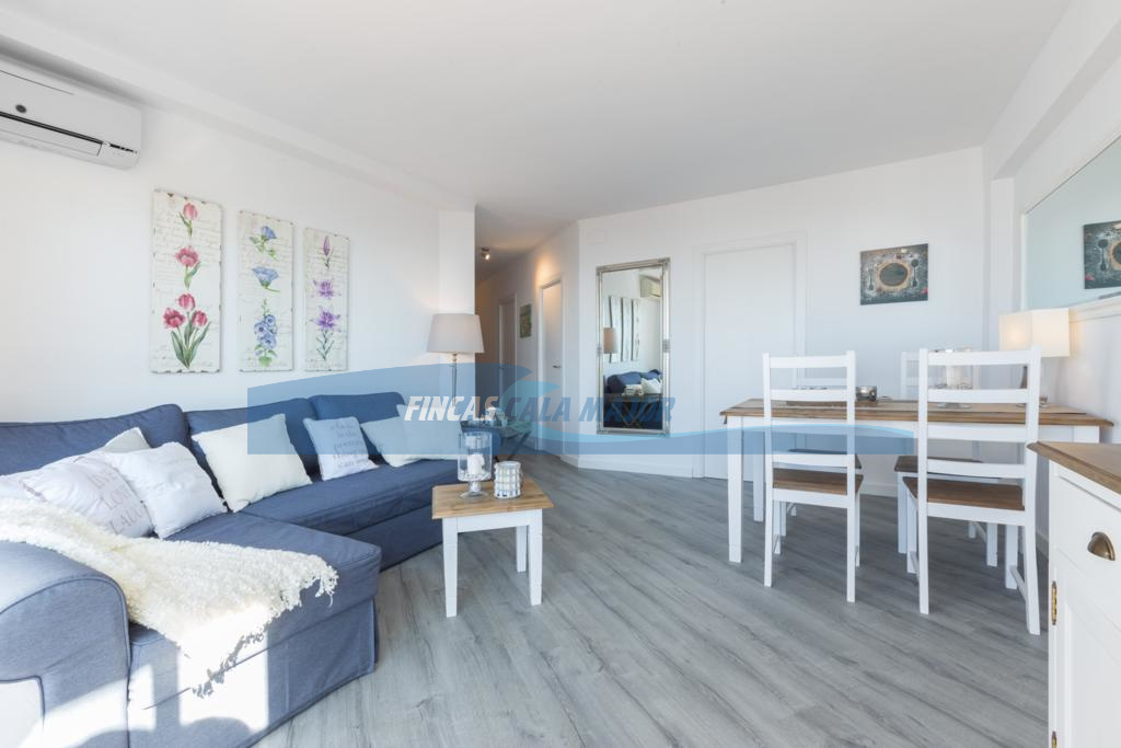 Rent A Room In Palma De Mallorca