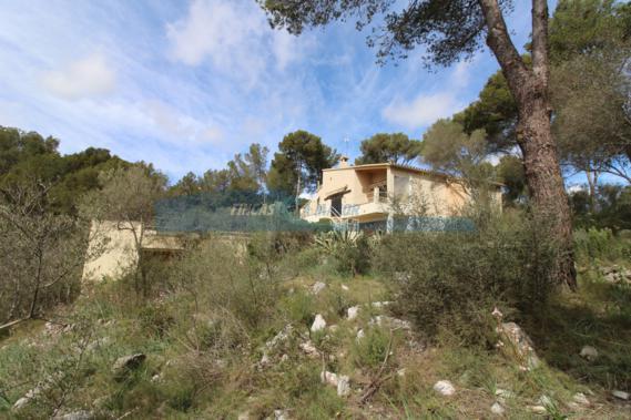 Casa en Son Font (Calvià) – 01199 ES
