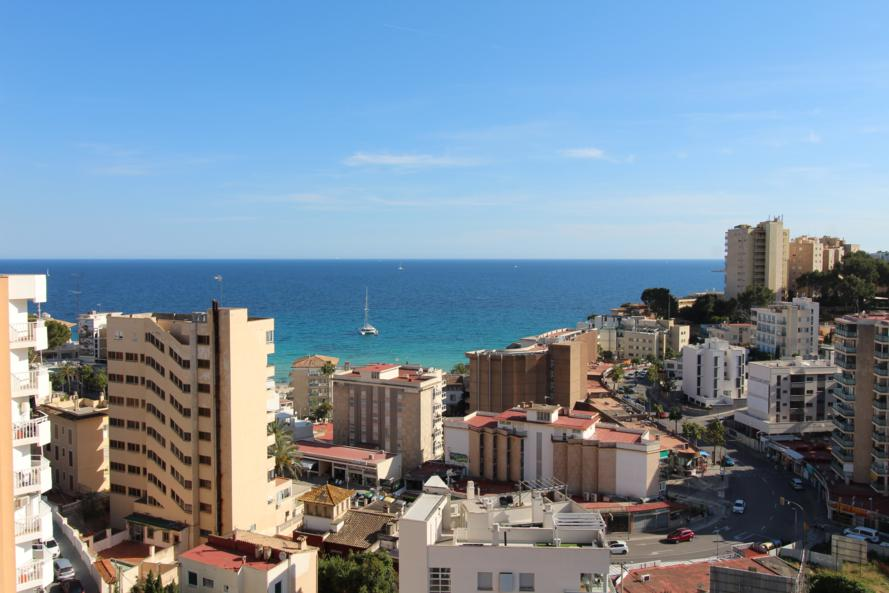 Estudio en Cala Major – RESERVADO!!!